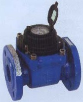 Waltmann Type Magnetic Water Meter
